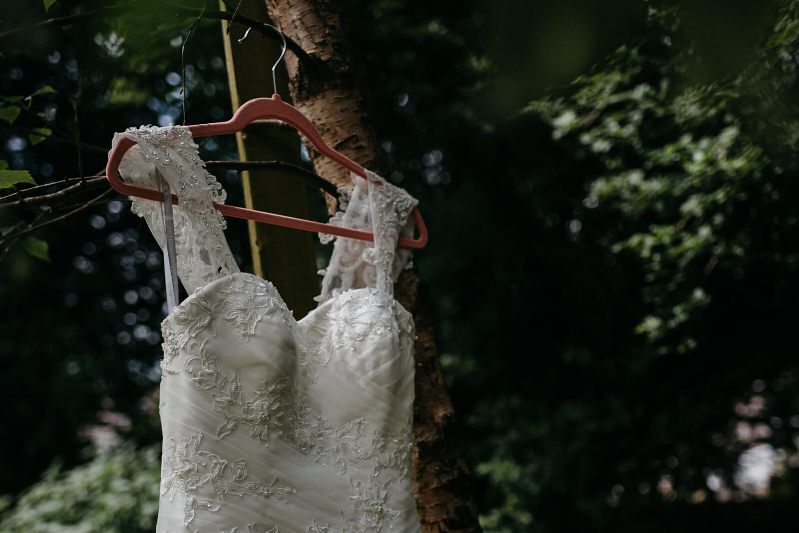 brides dress hanging from tree, rustic and natural portraits for the modern bride
